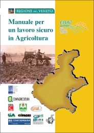 Manuale per un lavoro sicuro in Agricoltura - Dipartimento di ...