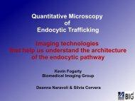 Quantitative Microscopy of Endocytic Trafficking Imaging ...