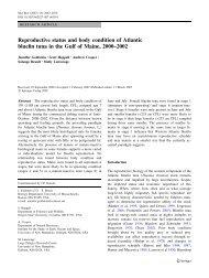 Reproductive status and body condition of Atlantic bluefin tuna in the ...