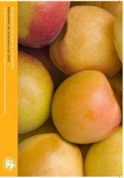 Studiekvalitetsrapporten 2008 - UMB
