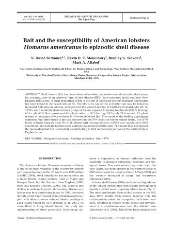Bait and the susceptibility of American lobsters Homarus ...