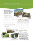 Drainage Ditches for Water Quality Protection - University of ... - Page 2