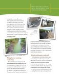 Drainage Ditches for Water Quality Protection - University of ... - Page 3