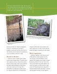 Drainage Ditches for Water Quality Protection - University of ... - Page 4