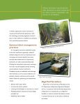 Drainage Ditches for Water Quality Protection - University of ... - Page 5