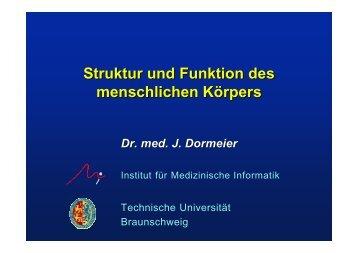 Vorl. IV (1,5 MB) - Technische Universität Braunschweig
