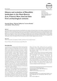 History and evolution of Mesolithic landscapes in the Haut-Quercy ...