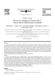 Populus alba - UMR 5059 - Université Montpellier 2