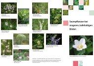 Saumpflanzen bei mageren, kalkhaltigen Böden (PDF 407 KB)