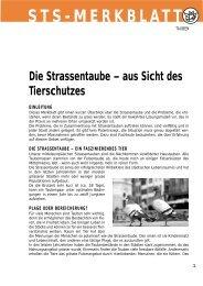 Die Strassentaube - Schweizer Tierschutz STS