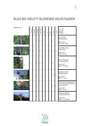 Blau bis violett blühende Wildstauden (PDF 239 kB) - bei der ...