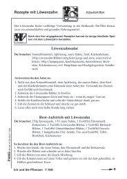 Löwenzahnsalat Brot-Aufstrich mit Löwenzahn Rezepte mit ...