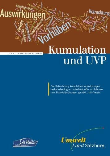 Expertenpapier Kumulation und UVP