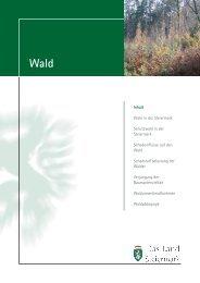 Inhalt Wald in der Steiermark Schutzwald in der ... - Land Steiermark