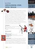 KLIMA GEFAHREN FÜR DEN WALD - Page 3