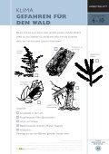 KLIMA GEFAHREN FÜR DEN WALD - Page 5