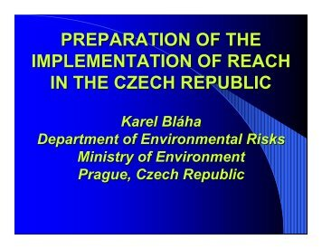 preparation of the implementation of reach in the czech republic
