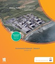 Hinkley Point C Development Consent Order Application
