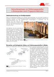 Herkunftsnachweis von Kohlenwasserstoffen in ... - IBL Umwelt