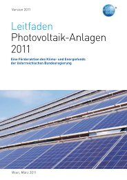 Leitfaden Photovoltaik-Anlagen 2011 - Klima- und Energiefonds