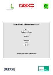 Muster Mobilitätskonzept