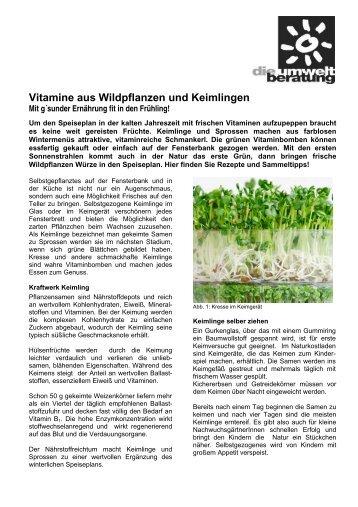 Vitamine aus Wildpflanzen und Keimlingen - Umweltprofis