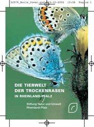 DIE TIERWELT DER TROCKENRASEN - Stiftung Natur und Umwelt ...