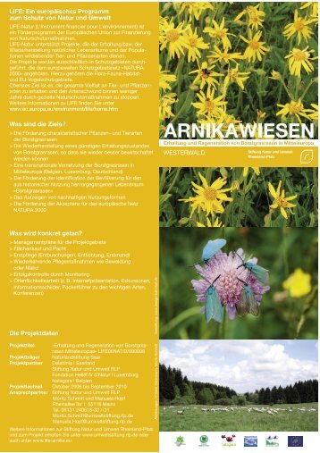 """Flyer """"Westerwald"""" (PDF   931 KB) - Stiftung Natur und Umwelt ..."""