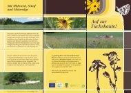 Flyer Fuchskaute kl - Stiftung Natur und Umwelt Rheinland-Pfalz