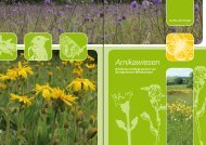 Broschüre Arnikawiesen - Stiftung Natur und Umwelt Rheinland-Pfalz
