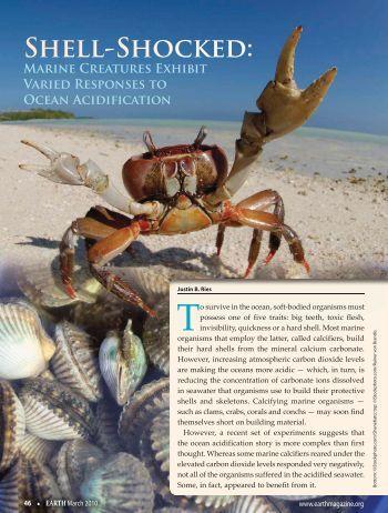 Marine Creatures Exhibit Varied Responses to Ocean Acidification