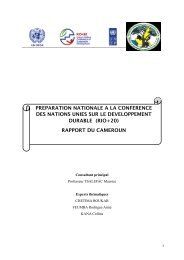 RIO+20_rapport final_Cameroon - United Nations Sustainable ...
