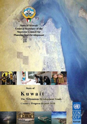 2010 - United Nations Development Programme