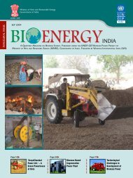 Bioenergy India - United Nations Development Programme
