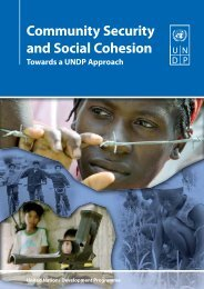 Community Security and Social Cohesion - United Nations ...