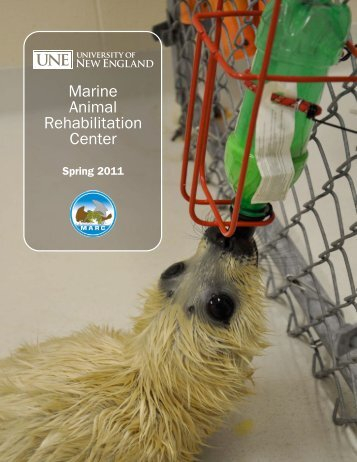 Marine Animal Rehabilitation Center - University of New England