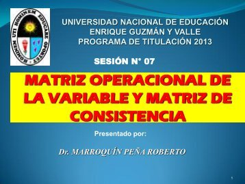 Variable I - Universidad Nacional de Educación Enrique Guzmán y ...