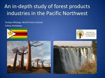 An in-depth study of forest industries in the Pacific Northwest
