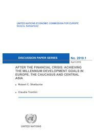 After the Financial Crisis: Achieving the MDGs in Europe ... - UNECE