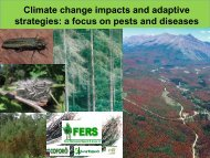 Climate change impacts and adaptive strategies: a focus ... - UNECE