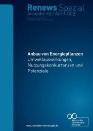 65_Renews_Spezial_Energiepflanzen_apr13 (pdf, 1 MB)