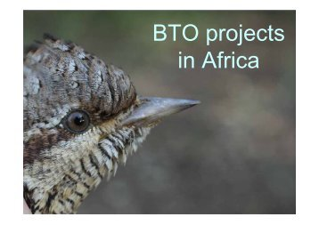 BTO projects in Africa - AEWA