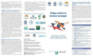 Grippe aviaire et oiseaux sauvages - AEWA