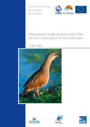 International Single Species Action Plan for the Conservation - AEWA