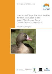 International Single Species Action Plan for the ... - AEWA