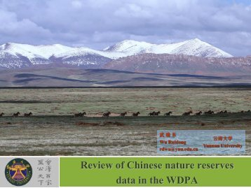 Review of Chinese nature reserves data in the WDPA