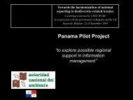 Panama Pilot Project