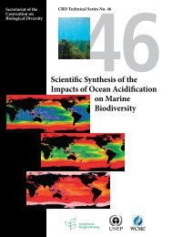 Impacts of Ocean Acidification on Marine Biodiversity