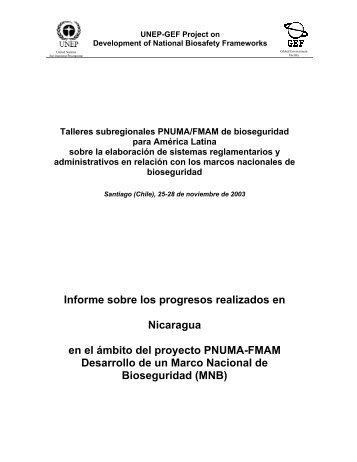 Informe sobre los progresos realizados en Nicaragua en el ... - UNEP