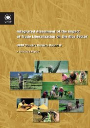 Integrated Assessment of the Impact of Trade Liberalization ... - UNEP